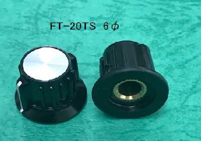 FT-20TS  6φ