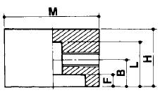MT-22 (大)